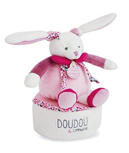 Doudou-et-Compagnie-Bote–Musique-Cerise-0